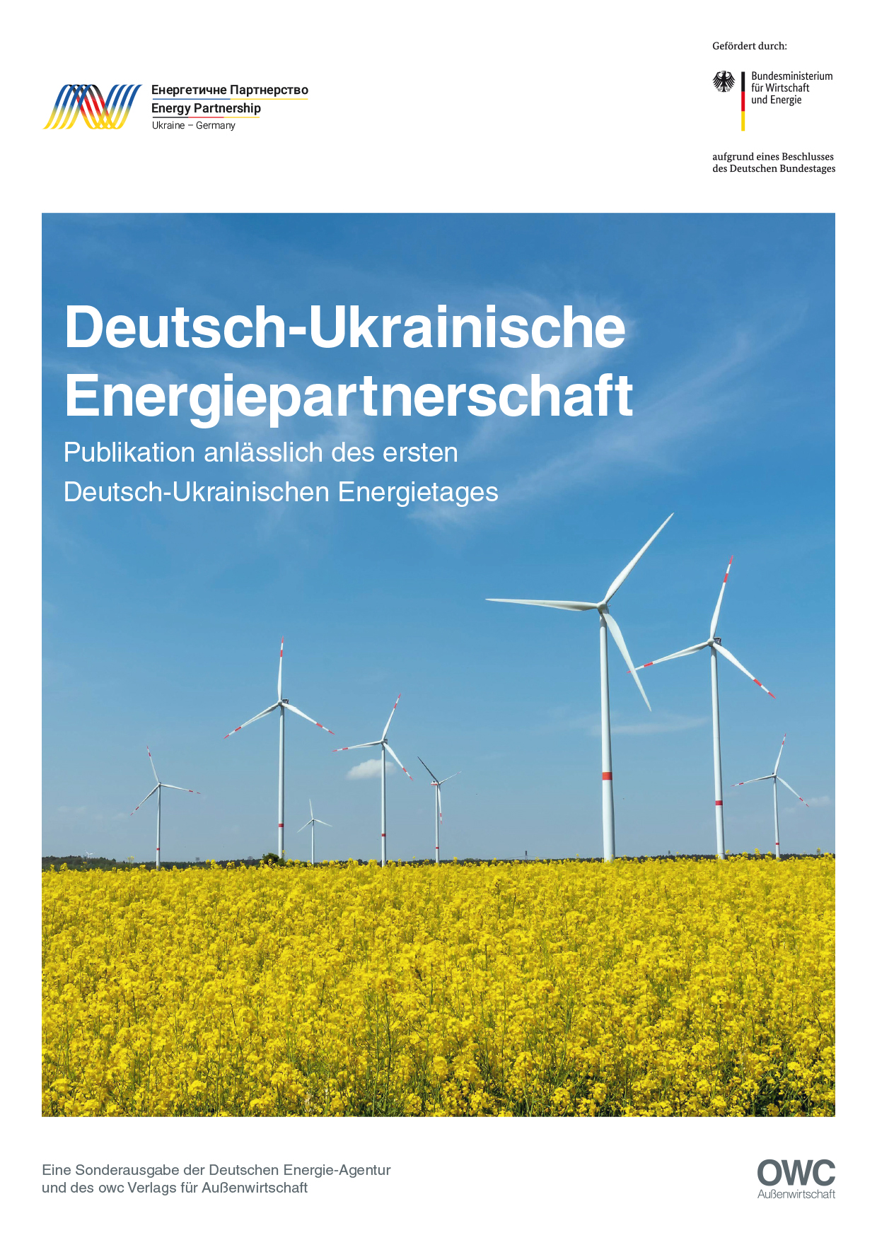 https://owc.de/wp-content/uploads/2021/01/dena-2020_cover.jpg